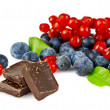 Chocolate with blueberries - 图库照片