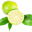 A halved lime on white background — Foto Stock