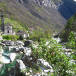 Verzasca River - Stock Photo