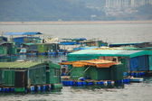 The Floating fishing Village In Hong Kong — Stock Photo