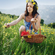 Flower picking - Stock Photo