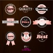 Set of vintage labels. - Stock Vector