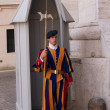 Vatican Swiss Guard — Stock Photo
