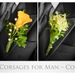 Wedding corsages for man - Stock Photo