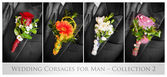 Wedding corsages for man — Stock Photo