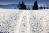 Empty cross-country ski track — Stock Photo