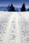 Empty cross-country ski track — Stock Photo