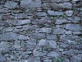 Wall of Castle, Ruin — Stock Photo