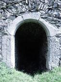 замок, руины дверь — Стоковое фото