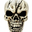 Creepy skull. — Stock Photo