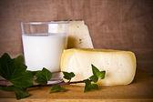 ナチュラル チーズ、乳製品業界 — ストック写真
