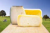 Natural cheese, dairy products industry — Stock Photo