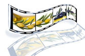 Film des olives et huile — Photo