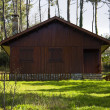 Hut in the forest — Stock Photo