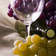 Wine — Stock Photo #8269136