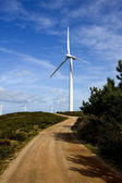 Wind turbine, ecology and renewable energy — Stock Photo