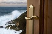 Door and nature — Stock Photo