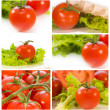 Photo collection of ripe tomatoes - Stock Photo