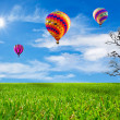 Stock Photo: Green field and balloon