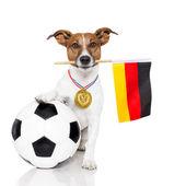Hond als voetbal met de medaille en vlag — Stockfoto