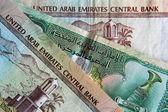 United Arab Emirates banknotes — Stock Photo