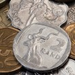 The coins — Stock Photo