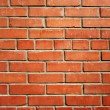 Brick wall — Stock Vector #8345121