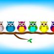 divertente gufi colorati in fila — Vettoriale Stock
