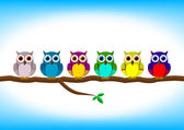 Funny colorful owls in a row — Stock Vector