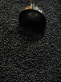 黒豆とスプーン — ストック写真