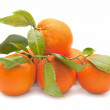 Fresh orange — Stock Photo #8088321