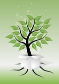 Tree box — Stock Vector