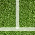Line sport on artificial grass — Stock Photo