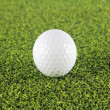 Golf ball on green grass — Stockfoto