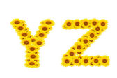 Alphabet YZ — Foto de Stock