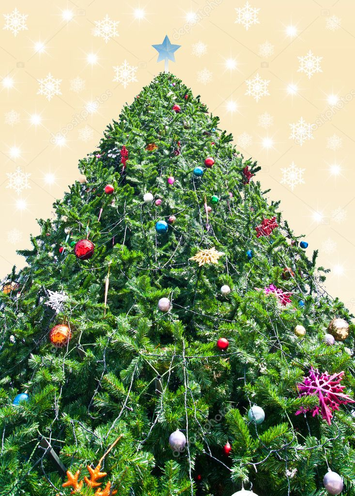 Christmas tree use for background — Stock Photo #9817223