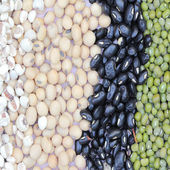 Varieties of bean — Stock Photo