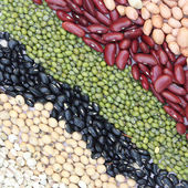 Varieties of beans — Stock Photo
