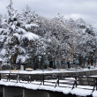 Stock Photo: Winter landscape. Wooden bridge crossing