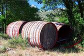 Old wine barrels — Stock Photo