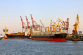 Ships are loading at the seaport — Stock Photo
