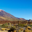 Large crater of the volcano Teide in the background on a sunny day — Stock Photo