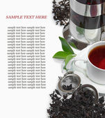 Black iron asian teapot with sprigs of mint for tea — Stock fotografie