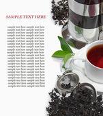 Svart järn asiatiska tekanna med kvistar mynta för te — Stockfoto