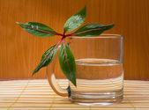 Glass of Water — Stok fotoğraf