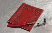 Kırmızı mürekkep kalemle — Stok fotoğraf