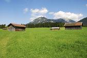 амбары в альпах — Стоковое фото