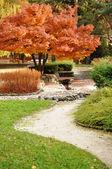Autumn in the Park — Stock Photo