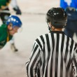 Ice Hockey Referee — Stock Photo