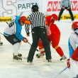 Stock Photo: University hockey league final match